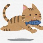 魚くわえた猫